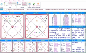Leostar Home (Best Astrology Software) Matching, Basic Matching