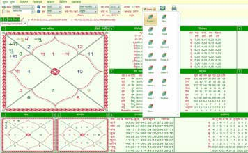 Leostar Horoscope Software, Hroscope Matching, Kundli, Theme Selection