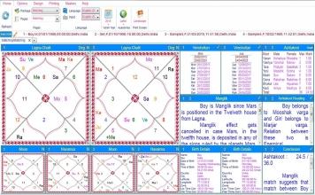Leostar Home (Best Astrology Software) Matching, Basic Matching