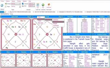 Leostar Home (Best Astrology Software), Horoscope Matching
